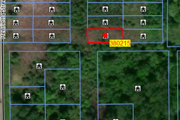 Lot 380215