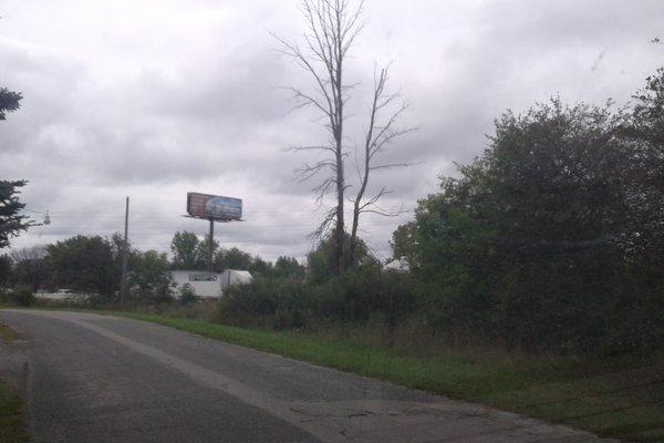 Lot 8047