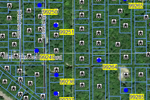 Lot 99249
