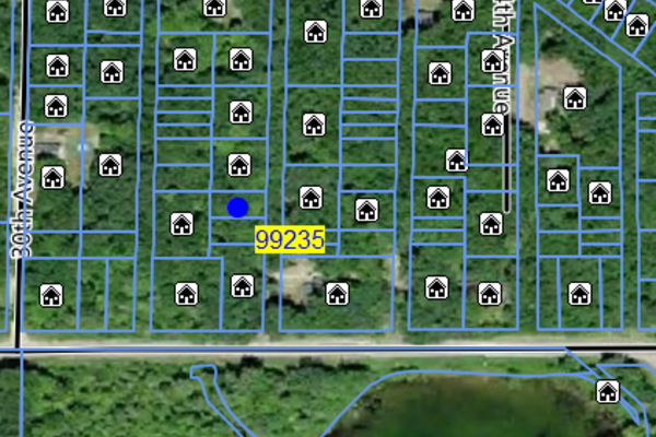 Lot 99235