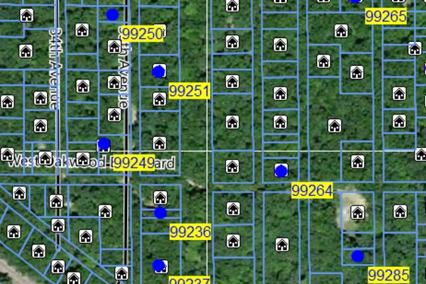 Lot 99262