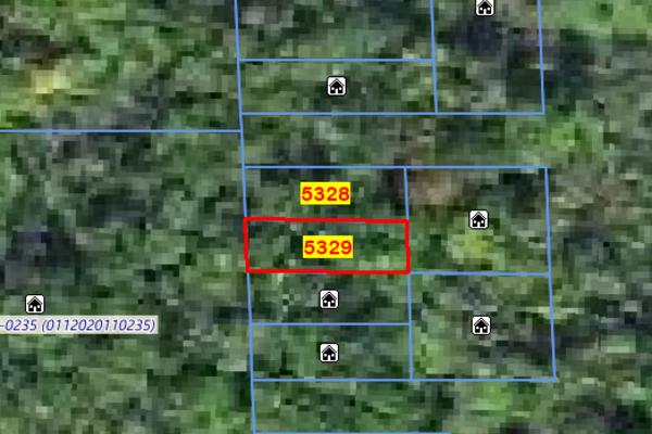 Lot 5329